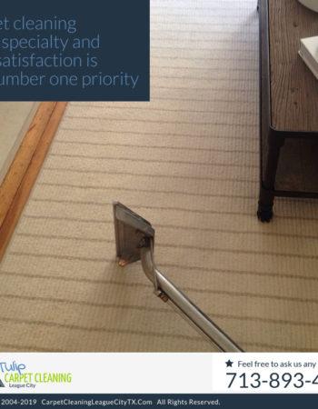 Tulip Carpet Cleaning League City